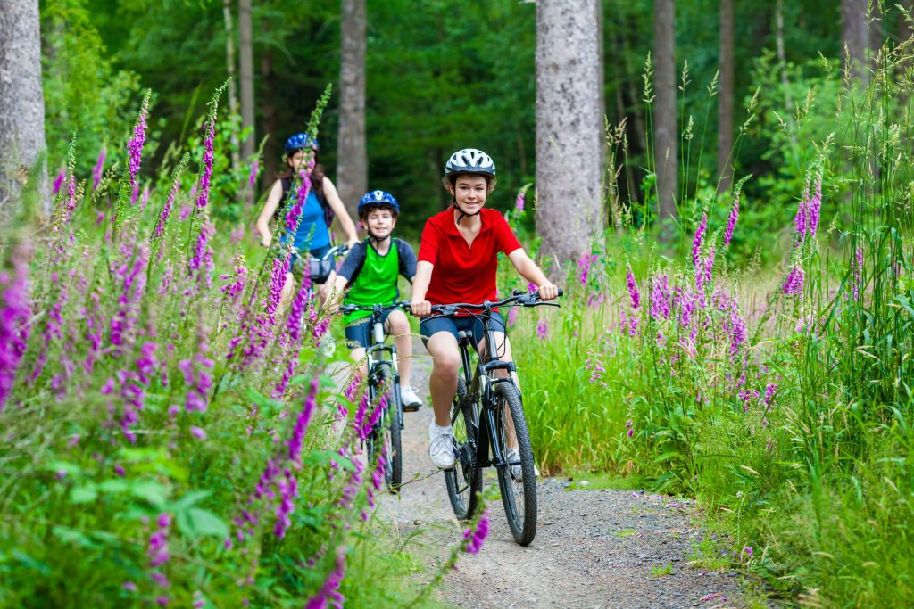 48622917 - healthy lifestyle - family biking